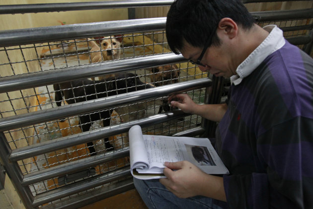 In this photo taken on Monday, April 9, 2012, Taiwanese photographer Tou Chih-kang identifies dogs on a manifest that are to be killed later that day at a government-run shelter in Taoyuan, northern T