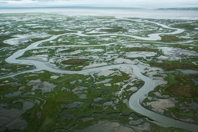 Scientists Find a Toxic Threat Lurking Under the Melting Arctic