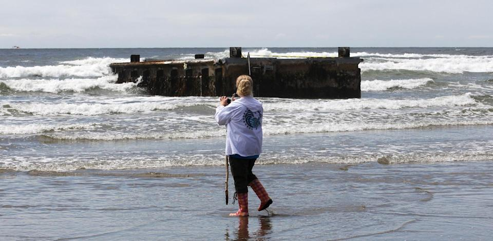 This June 6, 2012 photo shows Sue Odierno, of Salishan, Ore., looking at the massive dock from Japan that washed ashore on Agate Beach near Newport, Ore. Scientists are concerned that tsunami debris like this could be a new avenue for invasive species arriving on the West Coast (AP Photo/Rick Bowmer)