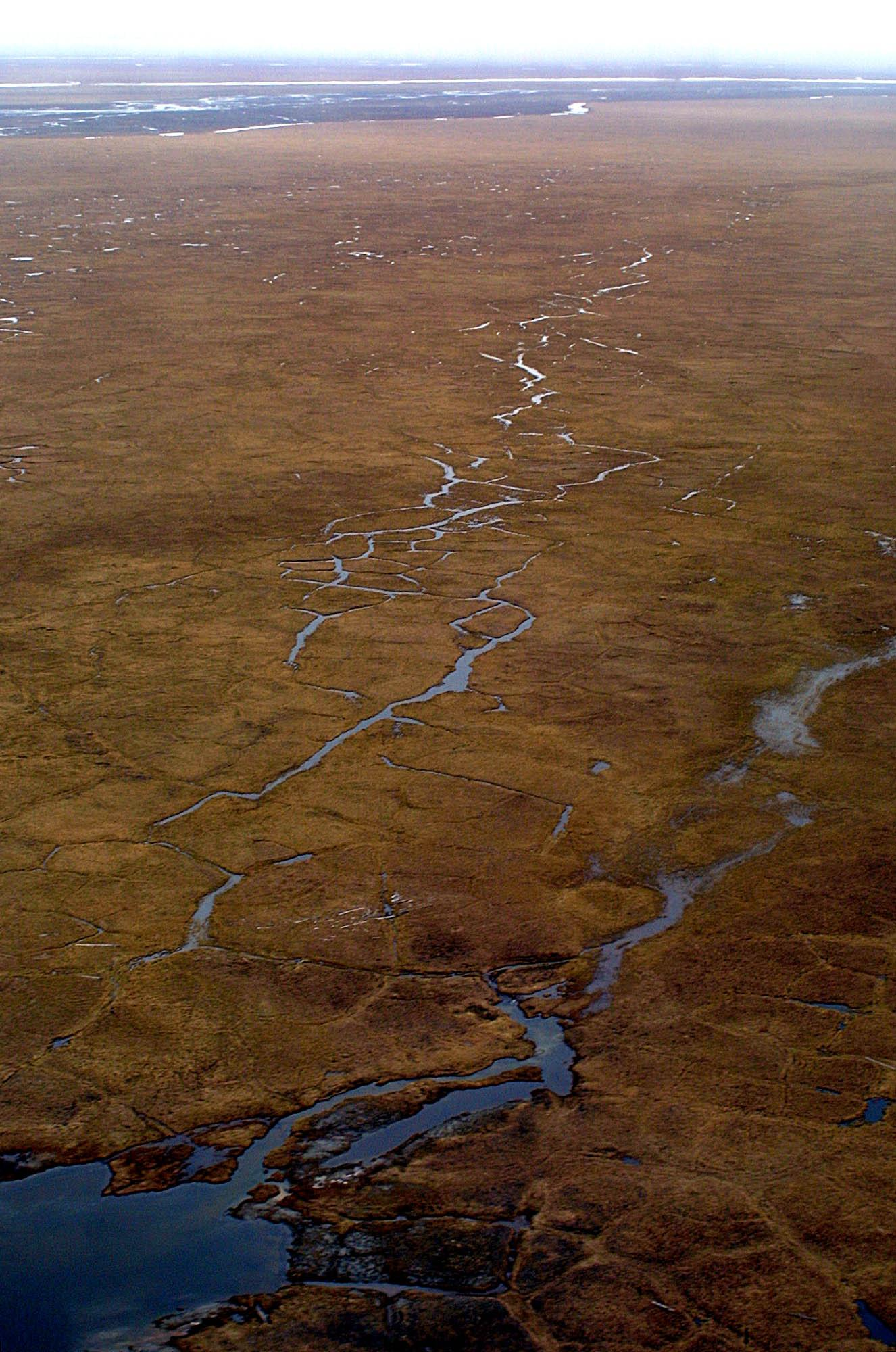 Obama seeks bigger wilderness designation in Alaska refuge