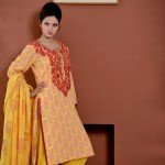 damak-party-wear-autumn-collection-for-girls (2)