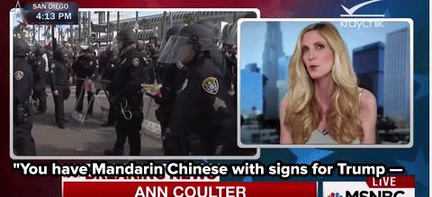 "Ann Coulter Calls Asian-American People ""Mandarins"" — and Insists She's Correct"