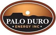 Palo Duro Announces Changes to Management and Board