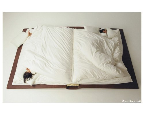 Fold-up book bed