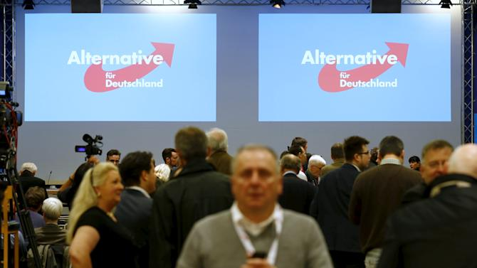 Members of right-wing Alternative for Germany party gather for party congress in Hannover