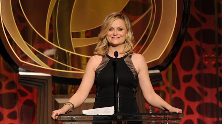 EXCLUSIVE - Amy Poehler speaks on stage at the 2014 Television Academy Hall of Fame on Tuesday, March 11, 2014, at the Beverly Wilshire in Beverly Hills, Calif. (Photo by Frank Micelotta/Invision for the Television Academy/AP Images)