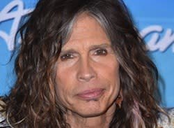 Steven Tyler's Lawyer Wins 'American Idol' Suit With Singer's Former Managers