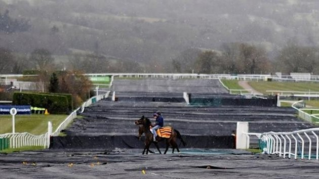 Horses cross the covered track during Champion Day at Cheltenham racecourse on March 12, 2013 in Cheltenham, England