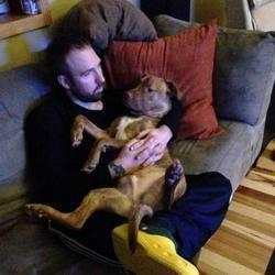 Pit Bull Rescued From High-Kill Shelter Really Loves Snuggling