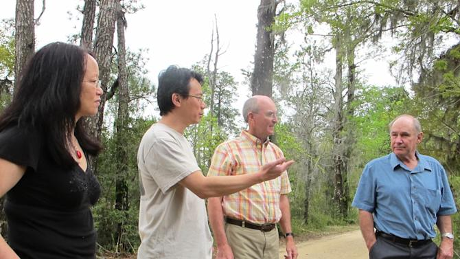 Clemson University researchers, from left, Bo Song, Alex Chow, William Conner and Tom Williams discuss sea level rise at Strawberry Swamp at Hobcaw Barony just outside Georgetown, S.C., on April 12, 2013. Clemson researchers have mapped the advance of salt water due to rising sea levels at the swamp during the past six decades. The study found a 300 percent increase in the salt marsh during the period. (AP Photo/Bruce Smith)