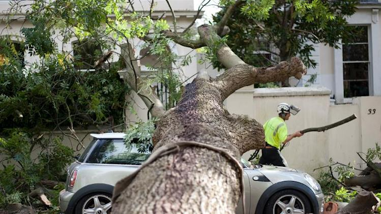 A contractor works on clearing the debris after a tree fell on car during a storm in London on October 28, 2013