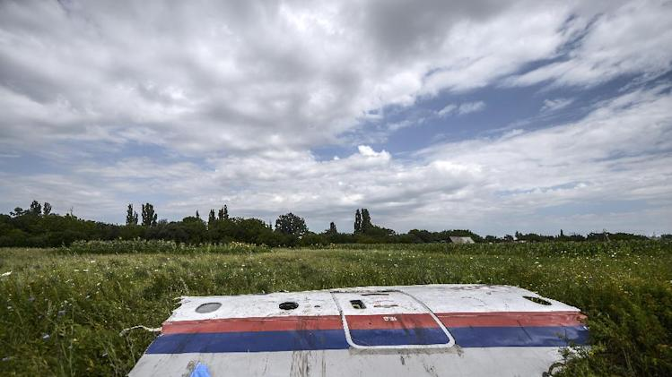 A piece of the wreckage of the Malaysia Airlines flight MH17 is pictured in a field near the village of Grabove, in the region of Donetsk on July 20, 2014