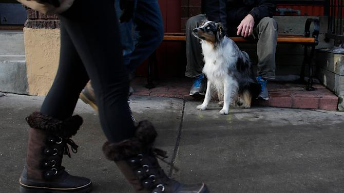 Zoe the dog sits with Jim Brandon as people pass by on Main Street at the Sundance Film Festival in Park City, Utah