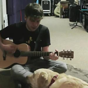A Song About Life From a Dog's Point of View