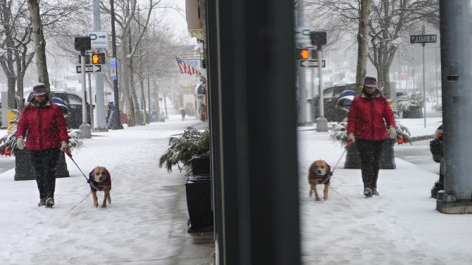 Danielle Kondratuk of Manchester walks her dog Bella as snow falls in Manchester, Conn., Friday, Feb. 8, 2013.  Snow began falling across the Northeast on Friday, ushering in what was predicted to be a huge, possibly historic blizzard and sending residents scurrying to stock up on food and gas up their cars. The storm could dump 1 to 3 feet of snow from New York City to Boston and beyond.  (AP Photo/Jessica Hill)