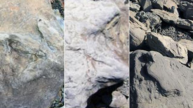 Thousands of Dinosaur Footprint Fossils Found Along Alaskan River (ABC News)