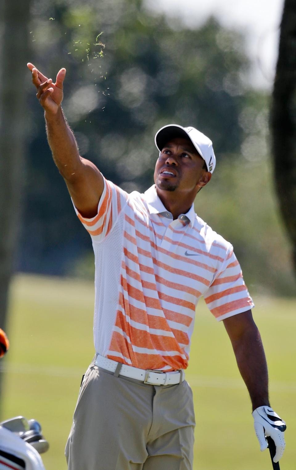 Tiger Woods checks the wind direction during the second round of the Cadillac Championship golf tournament Friday, March 8, 2013, in Doral, Fla. (AP Photo/Wilfredo Lee)