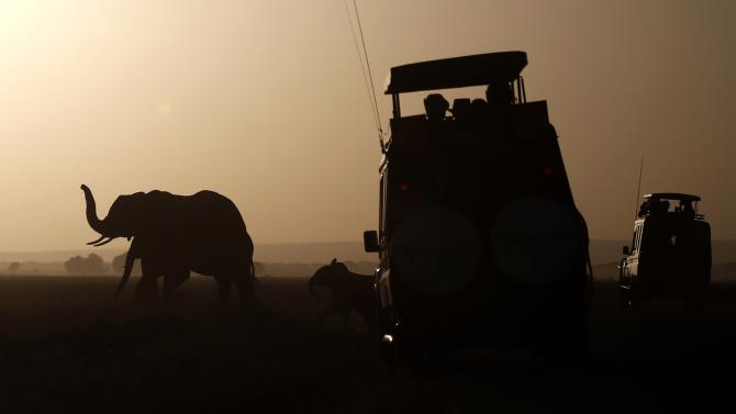 Elephants walk in front of visitors in Amboseli National park
