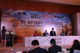 Yao Ming Says No to Ivory and Rhino Horn