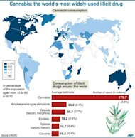 Map showing extent of cannabis use worldwide, according to UN drugs report