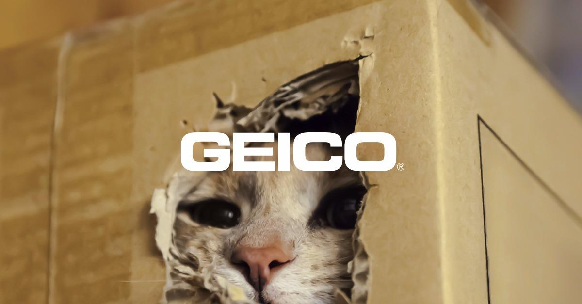 Meow's the Time to Save Money with GEICO.