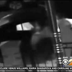 Police: Surveillance Video Shows Violent Attack On Woman, 3 Children In Queens