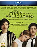 The Perks of Being a Wallflower Box Art