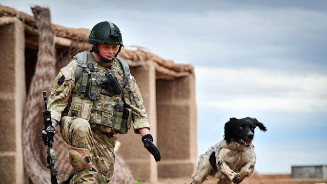 This is a undated Ministry of Defence handout photo made available on Thursday Oct. 25, 2012  of Lance Corporal Liam Tasker and his Springer spaniel mix Theo.   Theo the bomb-sniffing army dog who died in Afghanistan on the day his handler was killed has been honored with Britain's highest award for animal bravery. Springer spaniel mix Theo was posthumously awarded the Dickin Medal on Thursday at a ceremony in London. (AP Photo/ MoD)