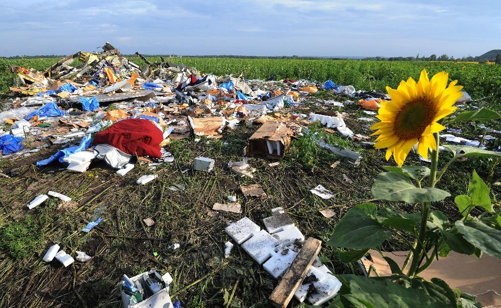 Timeline of MH17 air disaster over Ukraine