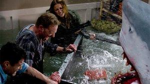 'Sharknado': Syfy Movie's 5 Most Groan-Inducing Lines of Dialogue
