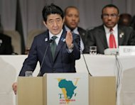Japanese Prime Minister Shinzo Abe delivers a speech during the opening session of the three-day Tokyo International Conference on African Development (TICAD), in Yokohama, near Tokyo, on June 1, 2013. Japan is to give $14 billion in aid to Africa over the next five years, Abe said