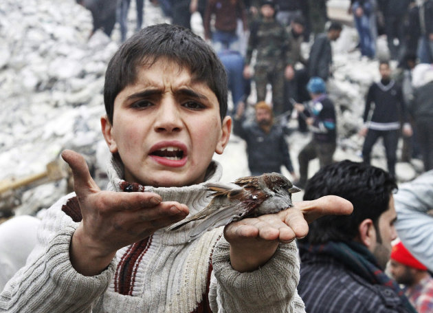 A Syrian boy holds a bird in his hand that he said was injured in a government airstrike hit the neighborhood of Ansari, in Aleppo, Syria, Sunday, Feb. 3, 2013.  The Britain-based activist group Syria