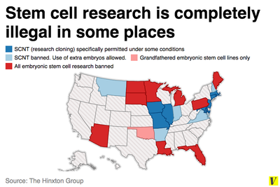 stem cell research in the usa Stem cell research and the law  1 the united states is in a unique position with respect to stem cell regulation – while there is no explicit legislation at the .