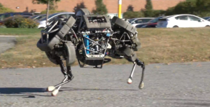 WildCat Robot Gallops in Video Debut