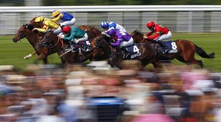 The field from The Qatar Bloodstock Richmond Stakes races for the finish line at Goodwood racecourse