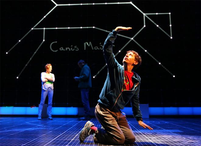 "​Autistic fans' appreciation of ""The Curious Incident"""