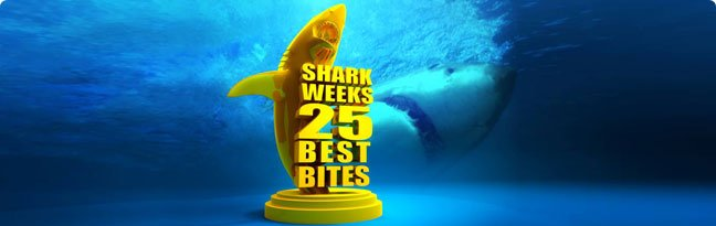 Shark Week's 25 Best Bites