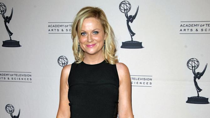 """FILE - In this Aug. 20, 2012 file photo, actress Amy Poehler attends the Academy of Television Arts and Sciences' Performers Peer Group Reception at the Sheraton Universal Hotel, in Los Angeles. Television looks like the land of female opportunity with the success of shows like """"Girls"""" and """"New Girl"""" and the achievements of actor-writers including Tina Fey and Lena Dunham. but making TV remains largely man's work. (Photo by John Shearer/Invision/AP, File)"""