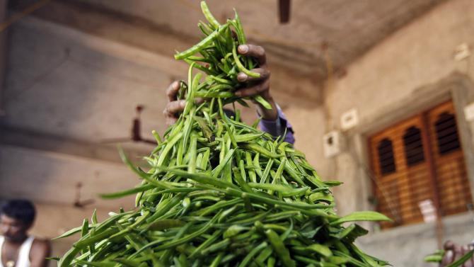 A farmer makes a heap of guar to sort them at Chiloda village in Gujarat