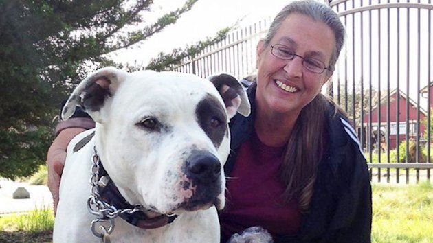 Family Chooses Homelessness Over Abandoning Pit Bull (ABC News)