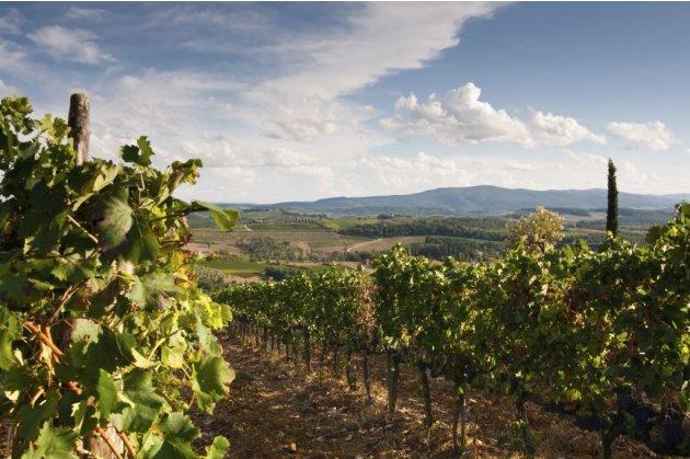 Travel Tuscany wine regio…