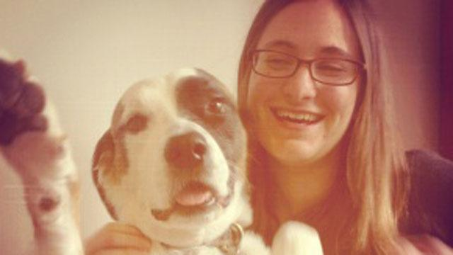 Max the Dog Survives Sandy's Wrath and Death of Owner