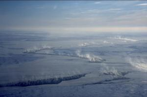 Arctic Sea-Ice Cracks Attract Toxic Mercury