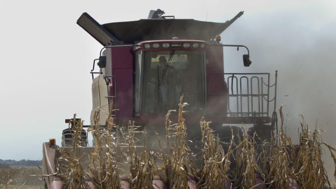 In this Sept. 6, 2012 file photo, a combine is surrounded by dust at it finishes harvesting a row of corn near Bennington, Neb. The latest update on the worst U.S. drought in decades shows that farmers bringing in their weakened corn crops had some relief with recent rains that soaked much of middle America. The weekly U.S. Drought Monitor map released Thursday, Sept. 13, 2012 shows two-thirds of Iowa now in extreme or exceptional drought, the two worst categories. (AP Photo/Nati Harnik)