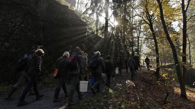 Volunteers carrying buckets containing salmon fry walk through woods ...