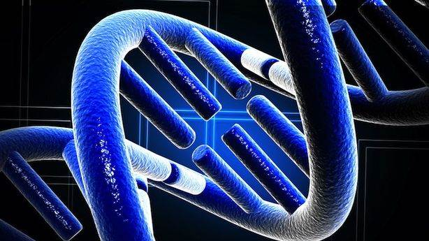 Should We Be Able to Patent Human Genes?