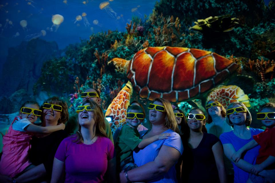 This undated image provided by SeaWorld Orlando shows a new attraction at the park featuring sea turtles. The exhibit, which includes live sea turtles as well as a 3-D movie about the endangered creatures, opened in April and is one of a number of new attractions at theme parks around the country this season. (AP Photo/SeaWorld Orlando)