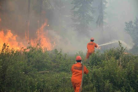 Firefighters tackle a wildfire near the town of La Ronge