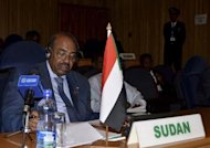 Sudan President Omar al-Bashir attends the 20th Ordinary Session of the Assembly of Heads of State and Governments at the African Union (AU) headquarters in Ethiopian capital Addis Ababa January 25, 2013. REUTERS/Tiksa Negeri