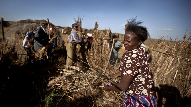 In this photo of Saturday Feb. 9, 2013, a displaced woman works with others to construct a new straw hut at 'Hope' camp for internally-displaced Kenyans from the Kikuyu tribe, near Nyahururu, in Kenya. The 624 people living at Hope Camp, a spot near the equator in a placed called Laikipia, is an illustration of one of the many lingering effects of the tribe-on-tribe violence that rocked Kenya after its 2007 presidential election. Five years later _ and now only days before the country's March 4 presidential election _ hundreds of refugees still have not returned home. (AP Photo/Ben Curtis)